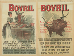 Advert For Bovril(014EVA000000000U07517000)